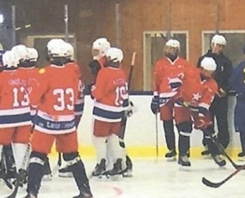 Artikel i Perspektiv från Hockeykvällen