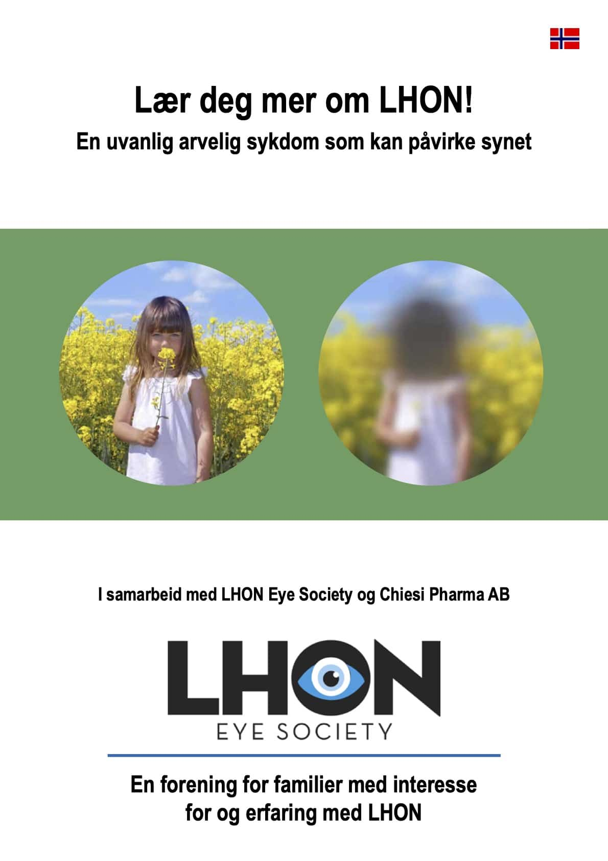cover image for brochure about LHON in Norwegian